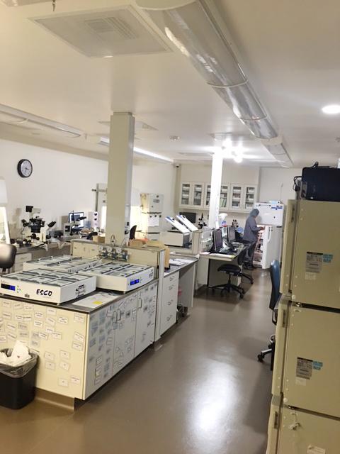 Stanford Lab